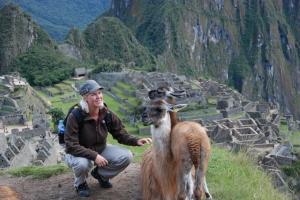 De lieve lama's bij Machu Picchu